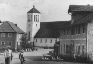Hausgänse von Bürmoos  ca. 1958