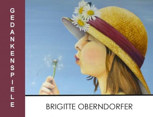 KUNST IM MUSEUM   Brigitte Oberndorfer – Gedankenspiele