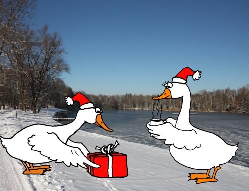 Frohe Weihnachten und einen guten Rutsch in ein gesundes neues Jahr 2021!